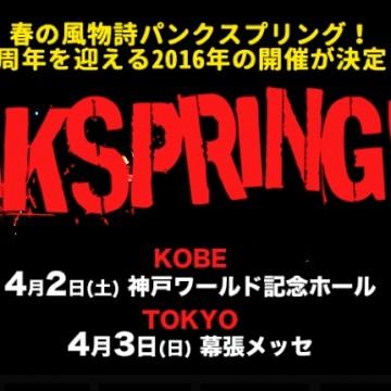 punkspring.com