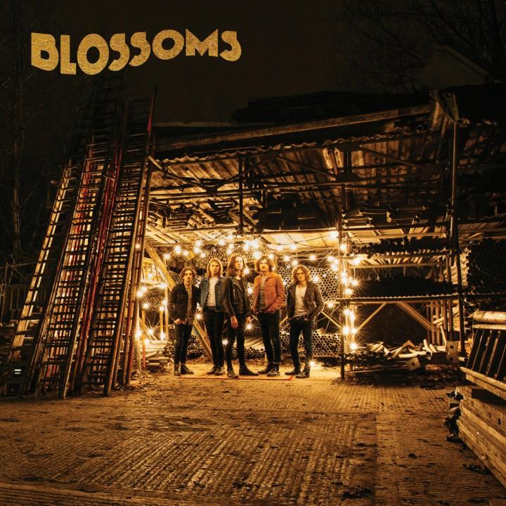 Blossoms-Blossoms