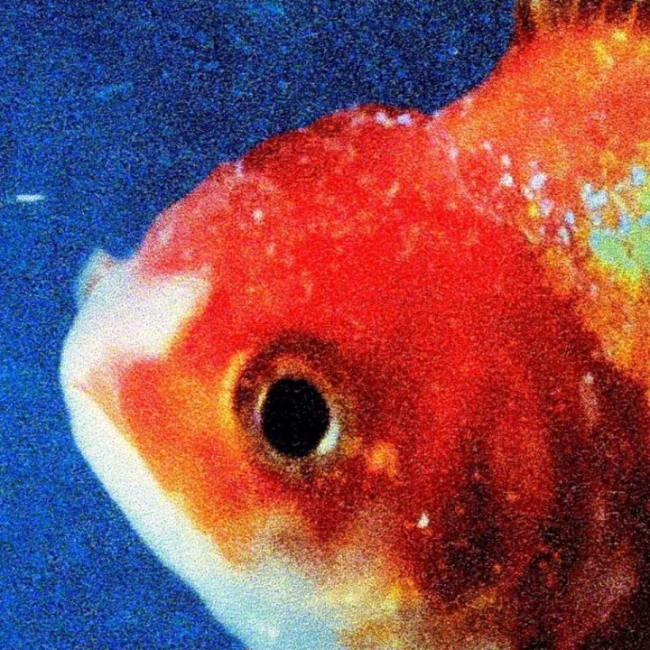 15_Vince Staples – 'Big Fish Theory'