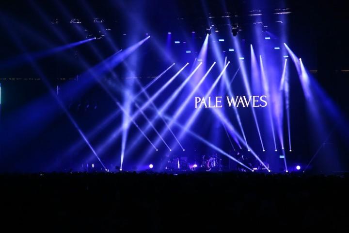 PaleWaves2