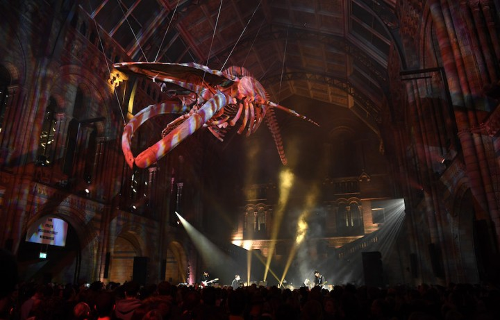 Coldplay Perform At The Natural History Museum