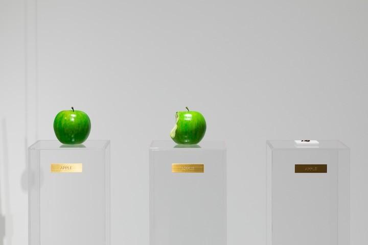 _53A8658_Apple